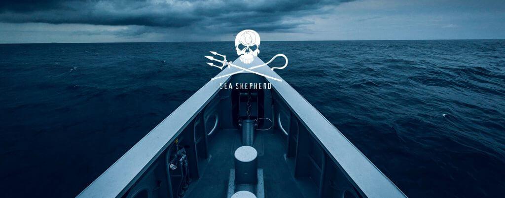 Sea Shepherd, le berger des océans